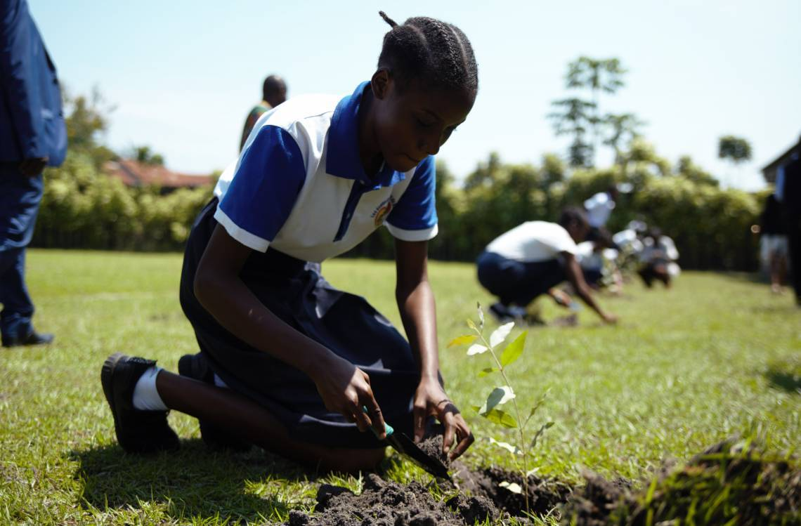 A young Congolese planting a tree.