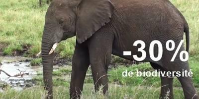 Notre vidéo : 7 chiffres clés sur le changement climatique