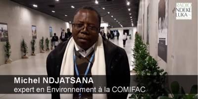 Les attentes de la Commission des forêts d'Afrique centrale à la COP24