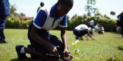Jeunesse et environnement au coeur du débat en RDC
